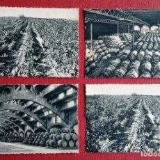 Postales: LOTE DE 8 POSTALES PUBLICITARIAS DE LA CASA CODORNIU. SIN ESCRIBIR. Lote 204122898