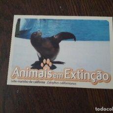 Postales: POSTAL DE PUBLICIDAD EXTRANJERA, ANIMAIS EN EXTINÇAO, LEÀO MARINHO DA CALIFORNIA.. Lote 207242115