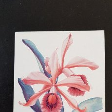 Postales: ORQUIDIA-LOELIA GRANDIS. Lote 210484121