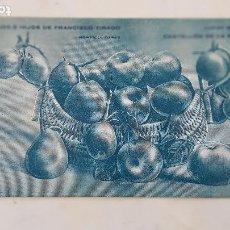 Postales: CASTELLON FRANCISCO TIRADO HORTICULTOR. Lote 210491743