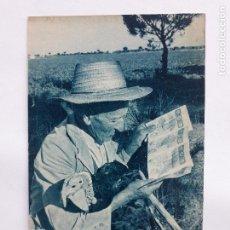 Postales: POSTAL PUBLICITARIA DE LA LOTERÍA NACIONAL. SEMENTERA DE ILUSIÓN. AÑO 1964.. Lote 221940041