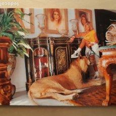 Postales: POSTAL PUBLICIDAD LIBRO RICAS Y FAMOSAS DANIELA ROSSELL SIN CIRCULAR. Lote 227787250