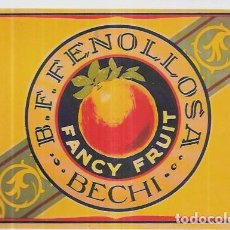 Cartoline: POSTAL *FANCY FRUIT B.F. FENOLLOSA * AÑO 1996. Lote 241038915