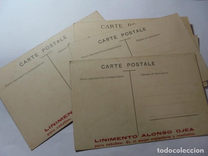 Postales: magnificas 5 postales antiguas publicidad linimento alonso ojera para caballos - Foto 6 - 246320350