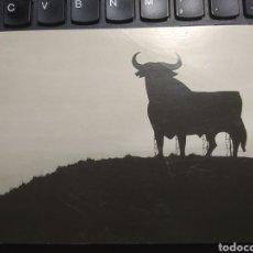 Postales: EL TORO. EDICIONES ASANGRE. FOTOGRAFÍA JAVIER ANDRADA. Lote 254973490