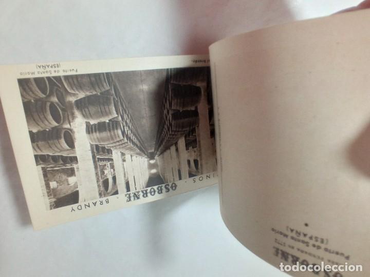 Postales: librillo de 10 postales Osborne vinos y brandy original no copia. Ref.auto - Foto 3 - 276822143