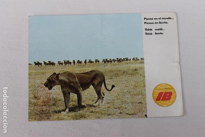 POSTAL IBERIA LINEAS AEREAS DE ESPAÑA AFRICA PARAISO DE SAFARIS FOTOGRAFICOS 1970 (Postales - Postales Temáticas - Publicitarias)