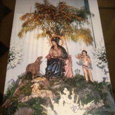 Postales: ESTAMPA DIVINA PASTORA, CADIZ. Lote 22596046