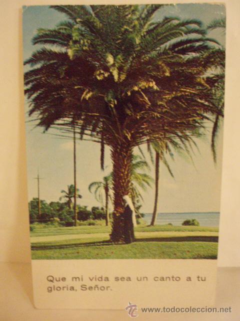 RECORDATORIO RELIGIOSO CANTO A LA GLORIA DE JESUS 1972 (Postales - Postales Temáticas - Religiosas y Recordatorios)