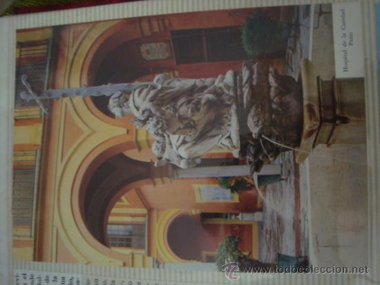 Postales: magnifico y curioso album de coleccionista de la ciudad de sevilla ysu semana santa , virgen cristo - Foto 58 - 29942249