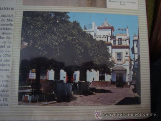 Postales: magnifico y curioso album de coleccionista de la ciudad de sevilla ysu semana santa , virgen cristo - Foto 57 - 29942249