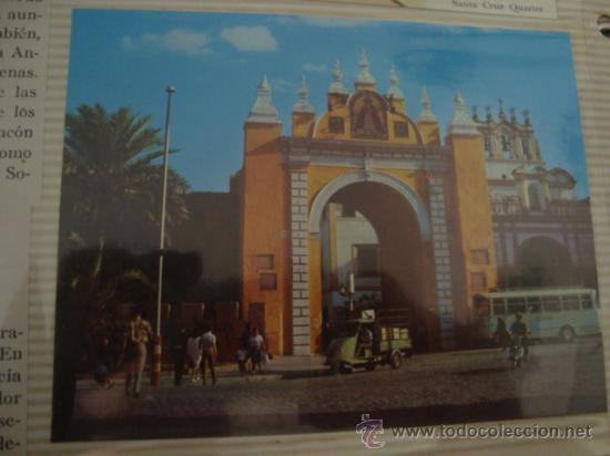 Postales: magnifico y curioso album de coleccionista de la ciudad de sevilla ysu semana santa , virgen cristo - Foto 51 - 29942249