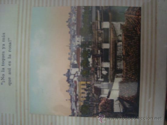 Postales: magnifico y curioso album de coleccionista de la ciudad de sevilla ysu semana santa , virgen cristo - Foto 42 - 29942249