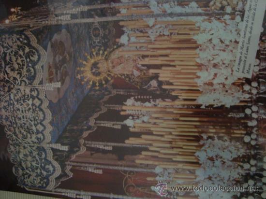 Postales: magnifico y curioso album de coleccionista de la ciudad de sevilla ysu semana santa , virgen cristo - Foto 35 - 29942249