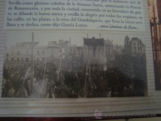 Postales: magnifico y curioso album de coleccionista de la ciudad de sevilla ysu semana santa , virgen cristo - Foto 29 - 29942249