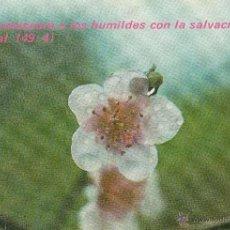 Postales: Nº 14551 POSTAL SALMO . Lote 45899432