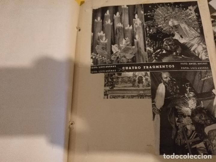 Postales: GRAN COLECCION ANTIGUOS +130 RECORTES PRENSA ORIGINALES DE LA SEMANA SANTA DE SEVILLA VIRGEN CRISTO - Foto 14 - 112914463