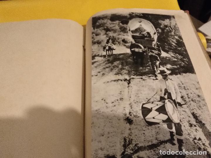Postales: GRAN COLECCION ANTIGUOS +130 RECORTES PRENSA ORIGINALES DE LA SEMANA SANTA DE SEVILLA VIRGEN CRISTO - Foto 45 - 112914463