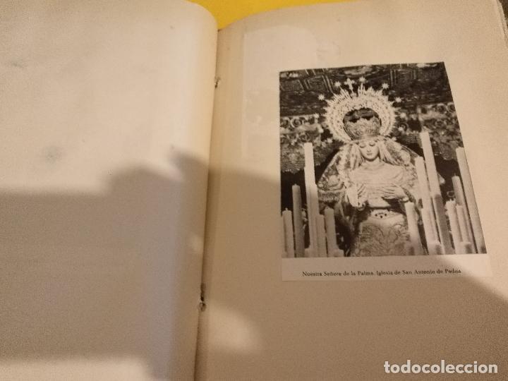 Postales: GRAN COLECCION ANTIGUOS +130 RECORTES PRENSA ORIGINALES DE LA SEMANA SANTA DE SEVILLA VIRGEN CRISTO - Foto 69 - 112914463