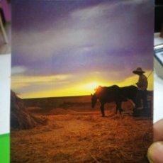 Postales: POSTAL TODO LO HAS ECHO CON SABIDURÍA... SALMO 103-2403-25. Lote 181200957