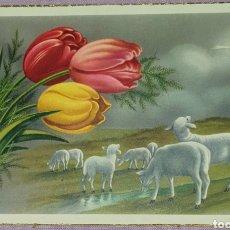 Postales: ANTIGUA TARJETA POSTAL RELIGIOSA USADA DE LOS AÑOS 50, EDICIONES ZYZ SERIE 560 N°3 BIEN CONSERVADA.. Lote 194740575