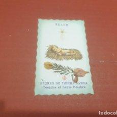 Postales: ESTAMPAS.....ESTAMPA DE BELEN...FLORES DE TIERRA SANTA...... Lote 194768341
