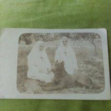 Postales: MONJAS CON PERRO. Lote 195019590