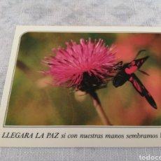 Postales: EDICIONES PAULINAS LLEGARÁ LA PAZ. Lote 202316666