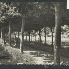 Postales: SANTO DOMINGO DE LA CALZADA - 21 - PASEO DE LOS MOLINOS - GARCIA GARRABELLA - (10.179). Lote 31853012