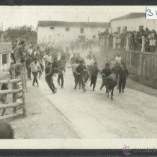 Postales: ALFARO - VAQUILLAS - FOTOGRAFICA - FOTO SANCHEZ - (3178). Lote 42997290