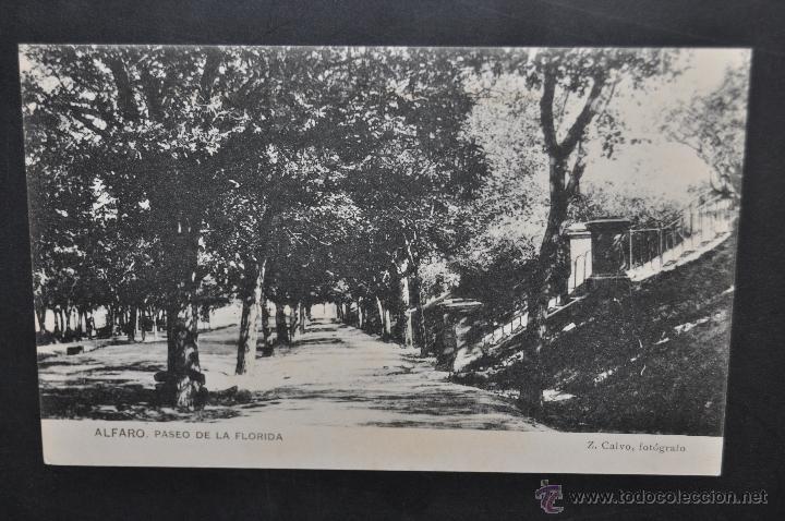 ANTIGUA POSTAL DE ALFARO. LA RIOJA. PASEO DE LA FLORIDA. HAUSER Y MENET. SIN CIRCULAR (Postales - España - La Rioja Antigua (hasta 1939))