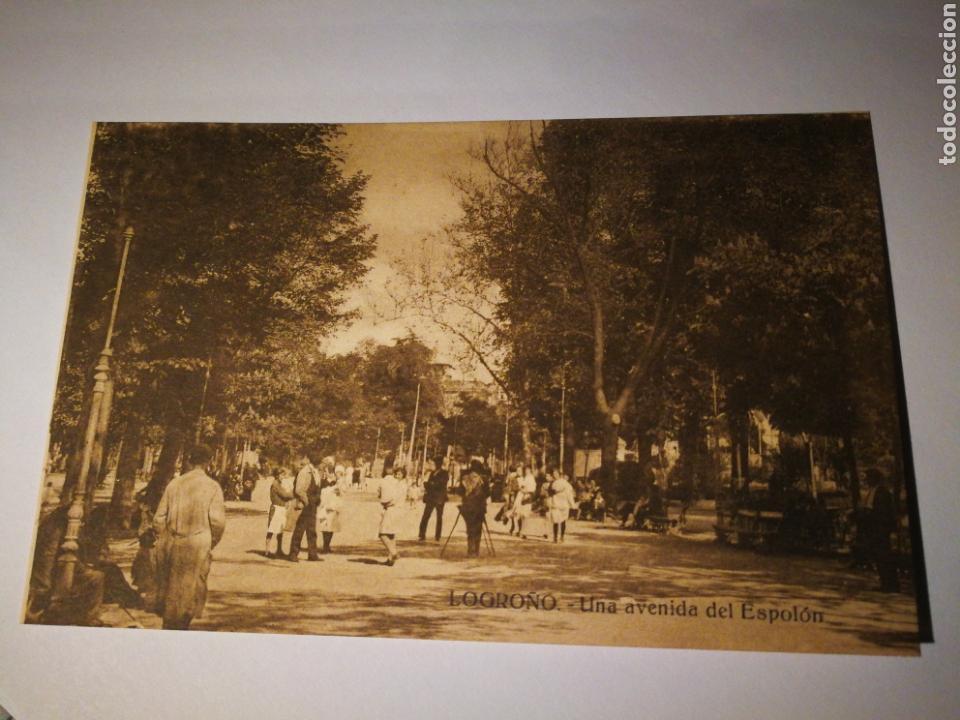 LOGROÑO UNA AVENIDA DEL ESPOLON. SIN CIRCULAR (Postales - España - La Rioja Antigua (hasta 1939))