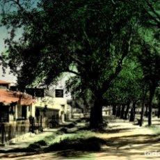 Postales: ALFARO (LOGROÑO).- VISTA PARCIAL PASEO DE LA FLORIDA. Lote 182670316