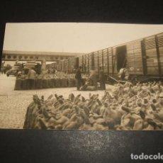 Postales: MADRID 1950 1ª FERIA DEL CAMPO TRANSPORTES FERROVIARIOS ESPECIALES TRANSFESA ED. IMPRENTA BAENA . Lote 128316471