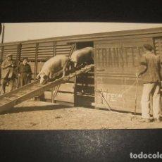 Postales: MADRID 1950 1ª FERIA DEL CAMPO TRANSPORTES FERROVIARIOS ESPECIALES TRANSFESA ED. IMPRENTA BAENA . Lote 128316563