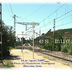 Postales: LA PLANA DE PICAMOIXONS 2005. Lote 150546301