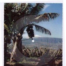Postales: POSTAL DISCO. TENERIFE, VALLE LA OROTAVA Y TEIDE AL FONDO. DISCO POSTAL FONOSCOPE. AÑO 1958. Lote 4838821