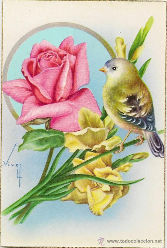 interesante postal bonito pajaro y preciosas flores c y z ao