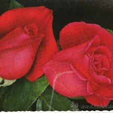 Postales: 2 ROSAS - C. Y Z. 6038 - . Lote 16747979
