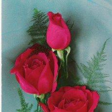 Postales: 3 ROSAS - C. Y Z. 6600 - . Lote 16748026