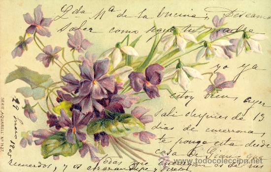 VIOLETAS. POSTAL RELIEVE, COLOR, ALEMANA. IMPRESA C. 1905 (Postales - Varios)