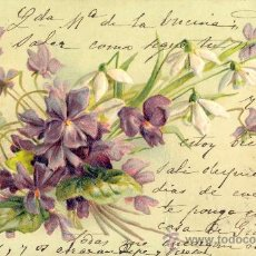 Postales: VIOLETAS. POSTAL RELIEVE, COLOR, ALEMANA. IMPRESA C. 1905. Lote 26289405