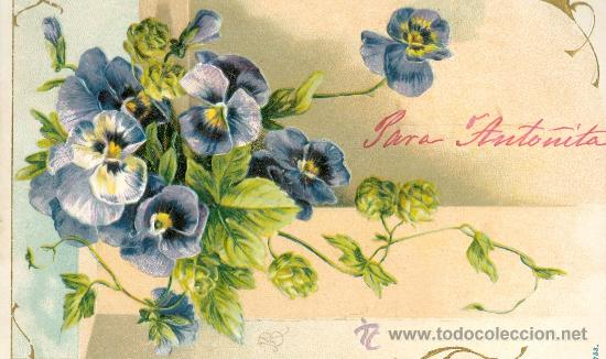 POSTAL ALEMANA. VIOLETAS. RELIEVE. C. 1910 (Postales - Varios)