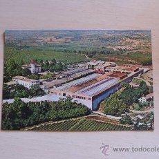 Postales: BONITA POSTAL DE CAVAS CODORNIU. Lote 23892856