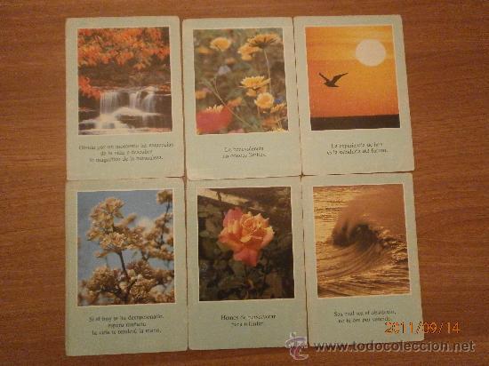 Postales: 15 POSTALES FRASES DIFERENTES - Foto 2 - 28534729