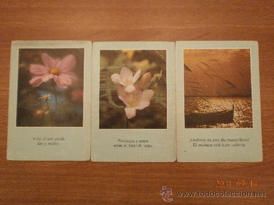 Postales: 15 POSTALES FRASES DIFERENTES - Foto 3 - 28534729