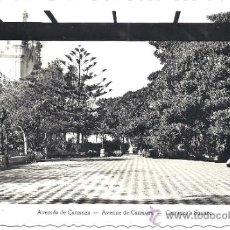 Postales: PS1272 CÁDIZ 'AVENIDA DE CARRANZA'. POSTAL FOTOGRÁFICA. AISA. NÚM. 207. CIRCULADA 1956. Lote 32608546