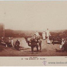 Postales: OBRA TEATRO. THE GARDEN OF ALLAH. Lote 32600654