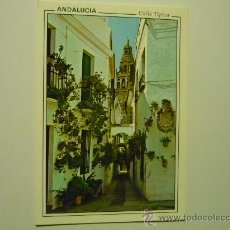 Postales: POSTAL CALLE TIPICA ANDALUCIA. Lote 34875064