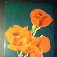 Postales: 2740 FLOR FLORES FLOWER FLOWERS ROSA ROSE POSTCARD POSTAL AÑOS 60/70 ESCRITA - TENGO MAS POSTALES. Lote 36225872